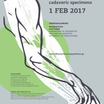 1st Seminar of Elbow Arthroscopy on Fresh Frozen Cadaveric Specimens poster