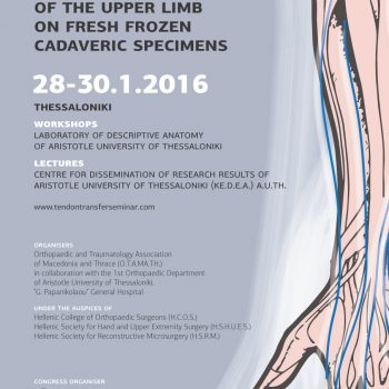 2nd Seminar of Upper Limb Tendon Transfer poster